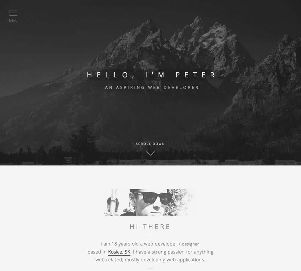Stark Contrast - web design grey scale color palettes