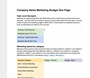 Marketing Budget - One Page template
